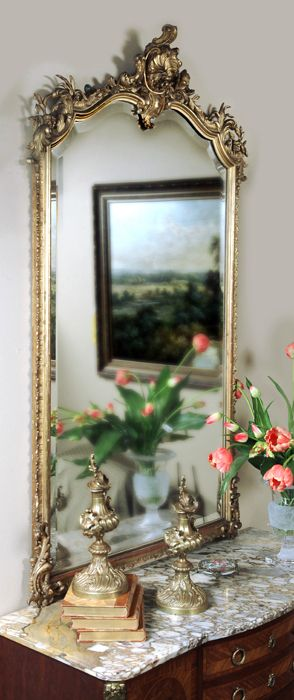 Como decorar casas con estilo tradicional - Louis XV