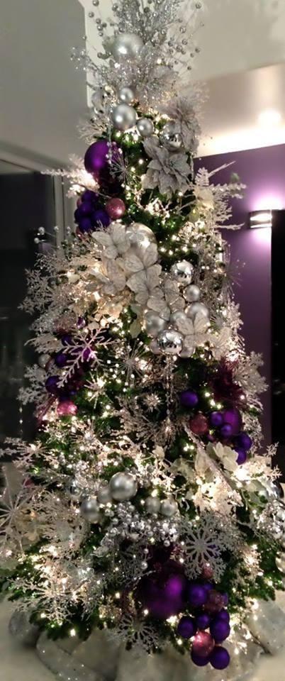 Pinos de navidad 2017-2018