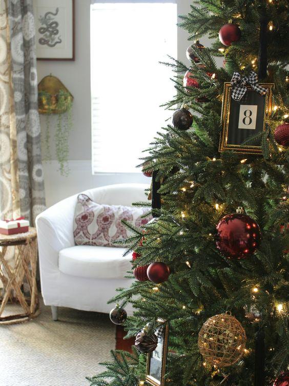 tipos de pinos de navidad