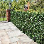 25 diseños de cercos para delimitar tu terreno con estilo