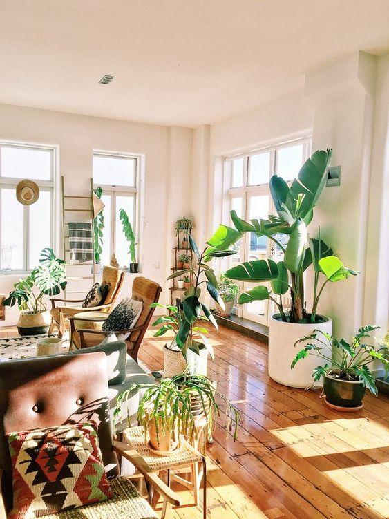 ¿Cómo puedes decorar tu casa?