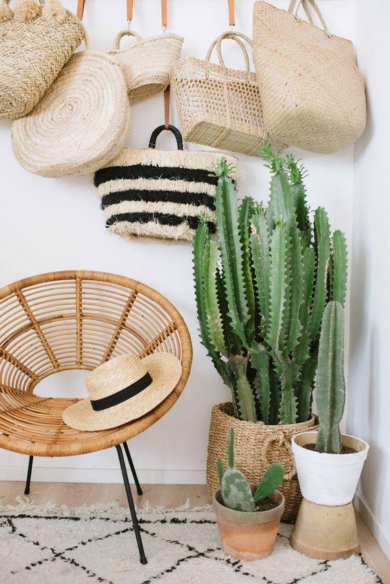 Ideas decorar interiores cactus 22 decoracion de for Cactus para interior