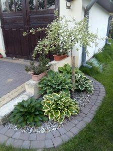 Ideas de jardines para decorar entradas