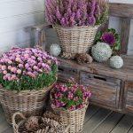 Como decorar un jardín