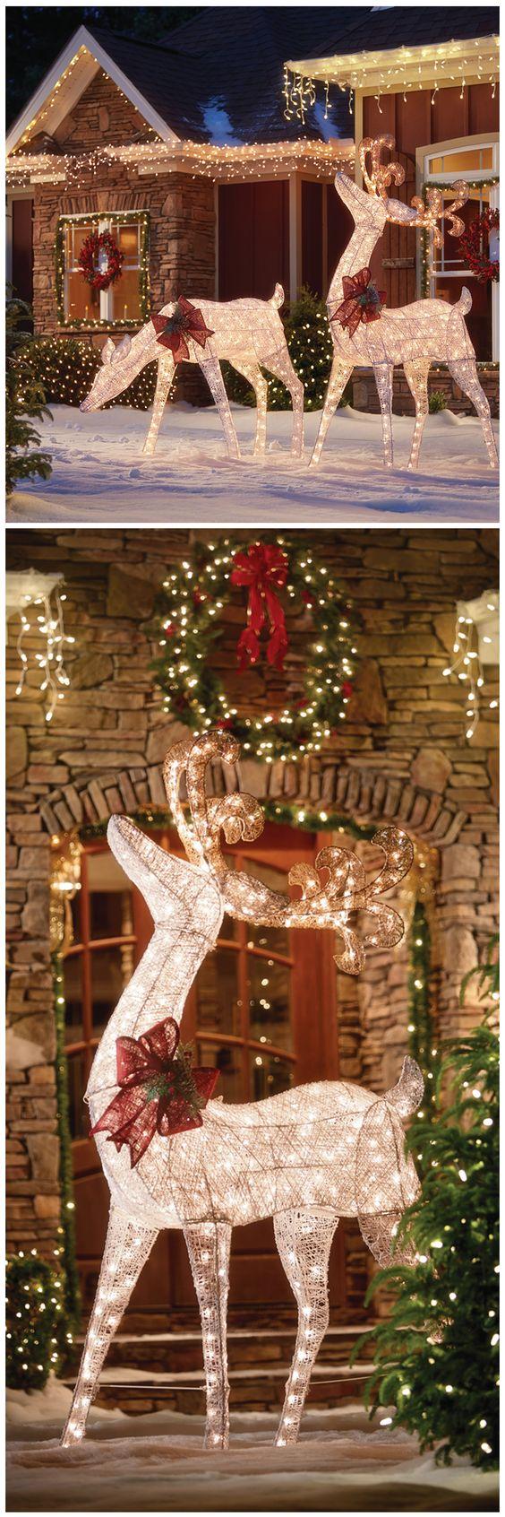 Decoración del jardín para navidad con luces