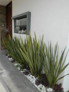 jardines para fachadas de casas