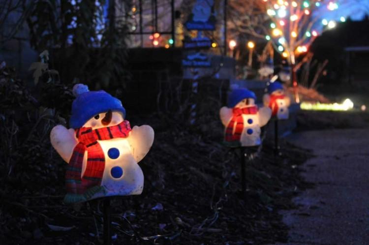 Iluminación para fiesta navideña en el jardín