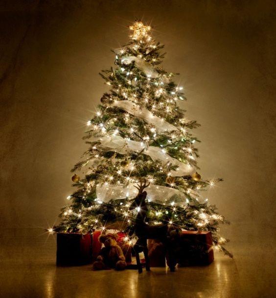 Decoración Del árbol Navideño Según El Feng Shui Navidad 2019