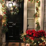 Nochebuenas para decorar esta navidad 2017 - 2018 (16)