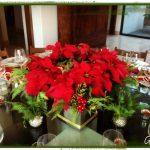 Nochebuenas para decorar esta navidad 2017 - 2018 (23)