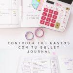 Bullet journals para 2018 El mejor metodo de organización (22)