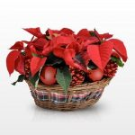 Centro de Mesa para Navidad con Flores