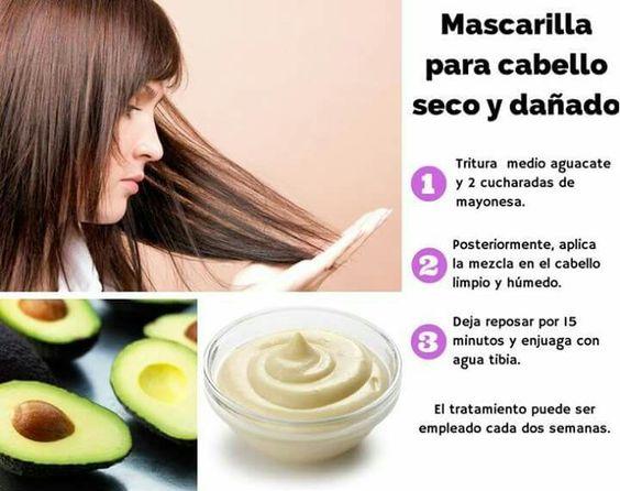 Cuidados y cortes de pelo (1)