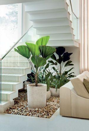 Decoracion de jardines interiores (2)