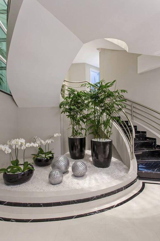 Decoracion de jardines interiores (4)