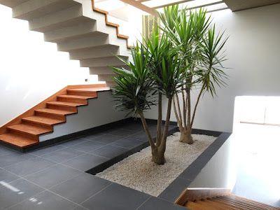 Decoracion de jardines modernos (4)