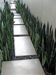 Disenos de pasillos en el jardin (3)