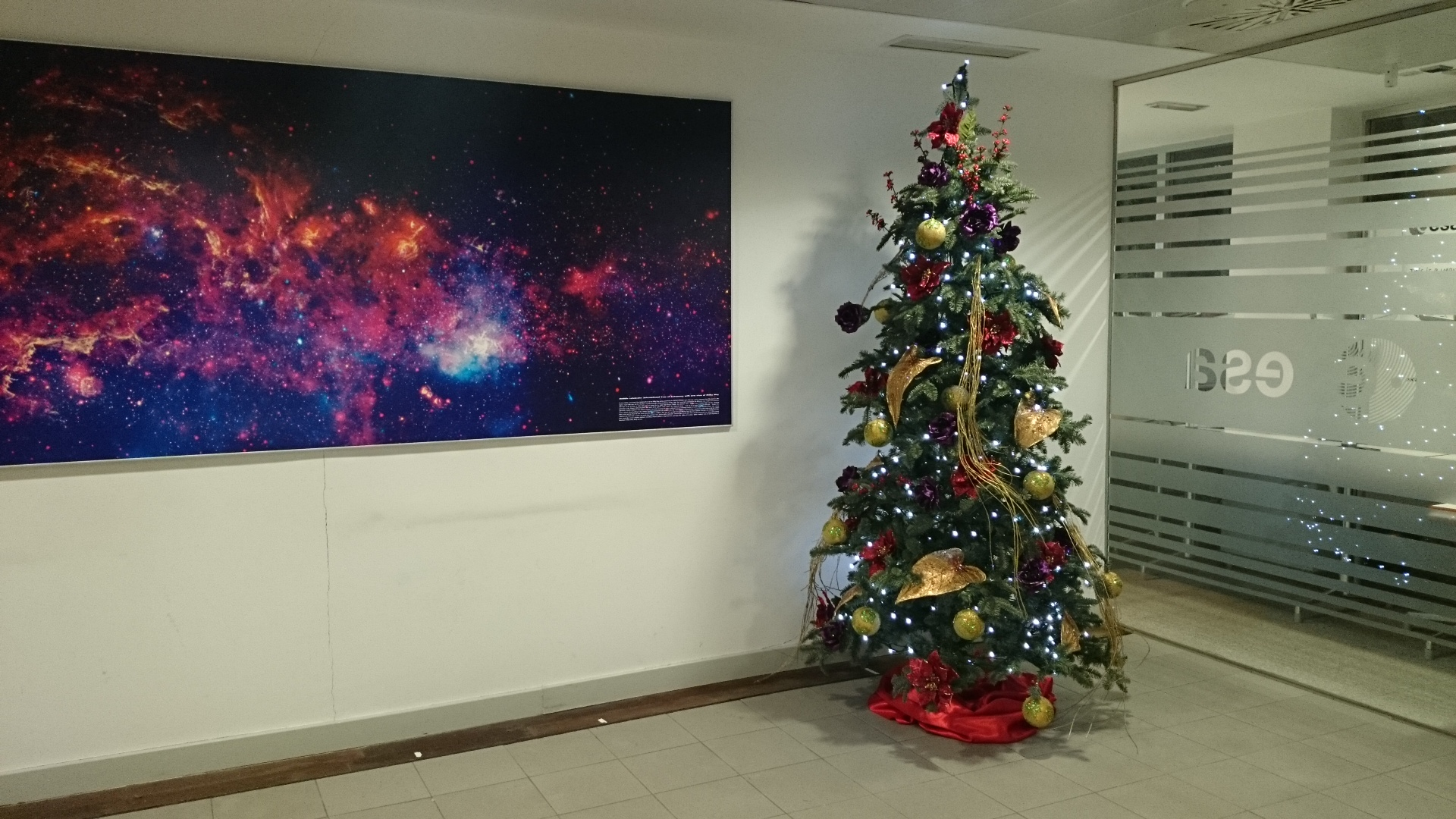 M s de 20 ideas de rboles navide os para tu oficina 11 como organizar la casa fachadas - Decoracion navidena oficinas ...