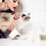 Tips para fotos de mascotas (11)