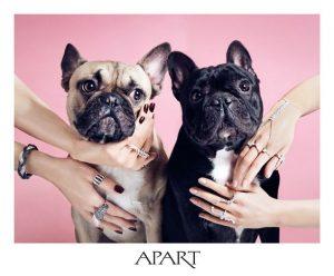 Tips para fotos de mascotas (20)