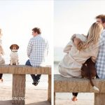 Tips para fotos de mascotas (5)