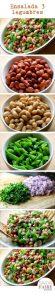 como hacer recetas vegetarianas faciles (2)