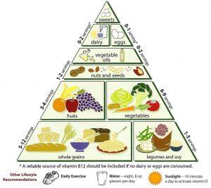 como hacer recetas vegetarianas faciles (3)