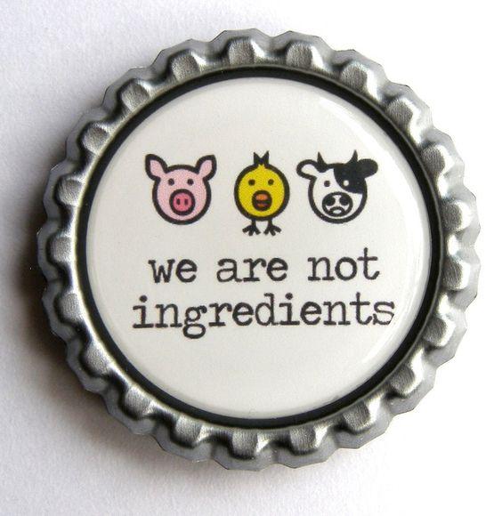 como se hace la comida vegetariana (2)