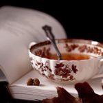 recetas para el invierno calientitas (7)