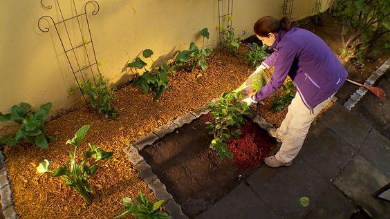 como mantener un jardin (5)