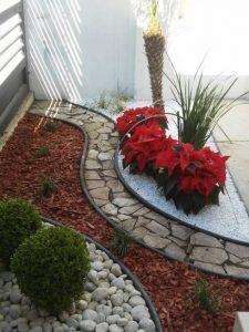 como plantar flores sobre la tierra
