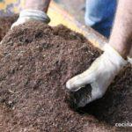 ideas para cuidar tu jardin (2)