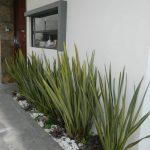 ideas para decorar el jardin del frente de una casa