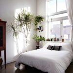 Imágenes de decoracion de dormitorios