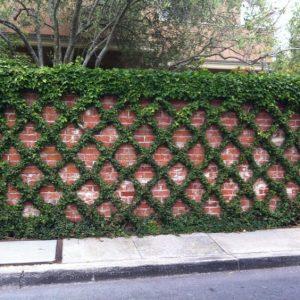 bardas con jardin vertical 5