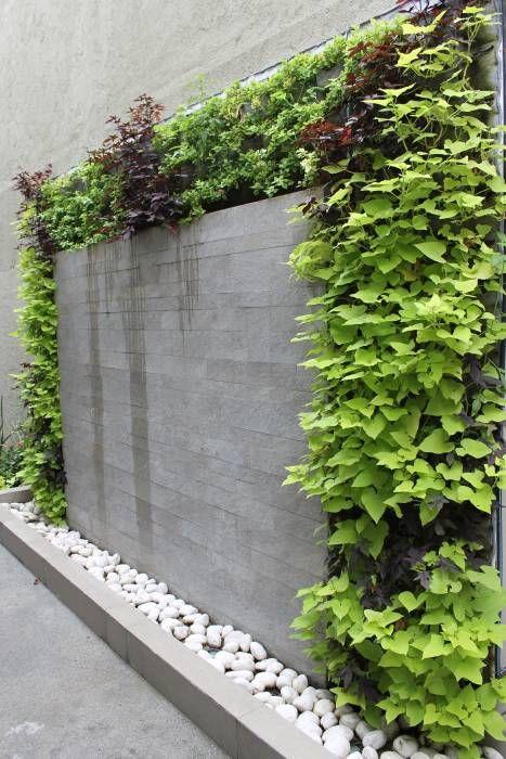 bardas con jardin vertical 7