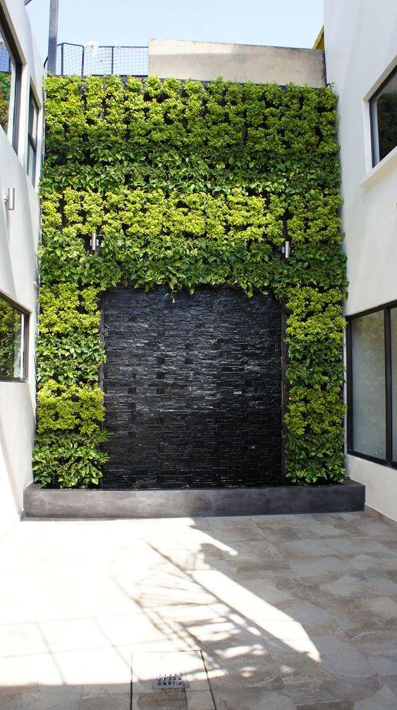 bardas con jardin vertical 9