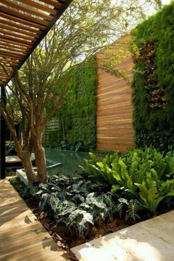 bardas con jardin vertical