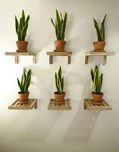 estantes para macetas plantas (1)