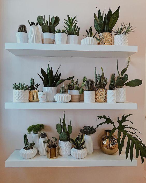 Repisas para jardin las mejores maneras para decorar tu for Plantas de interior ikea
