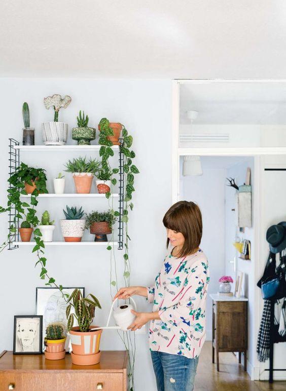 muebles para plantas de interior (5)