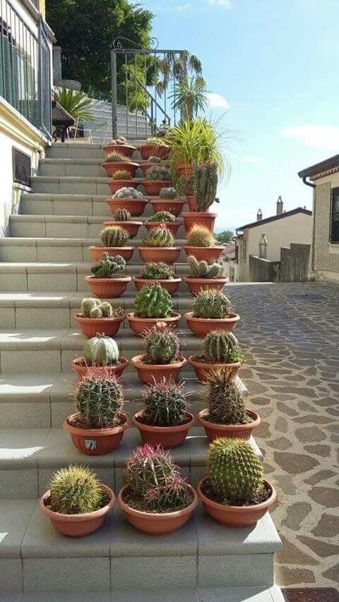 Repisas para jardin las mejores maneras para decorar tu for Escalera de jardin de madera