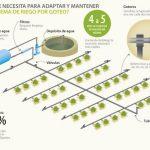 Cómo funciona el sistema de riego por goteo2