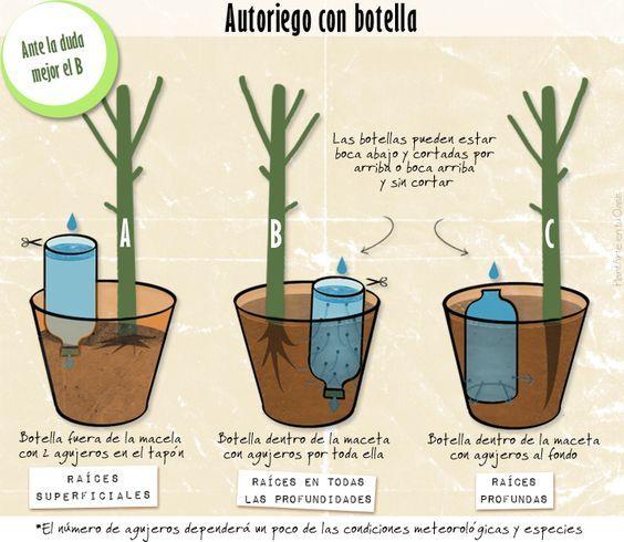 Riego por goteo casero c mo instalarlo en el jard n for Tipos de arboles para plantar en casa
