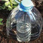Riego por goteo hecho con botellas6