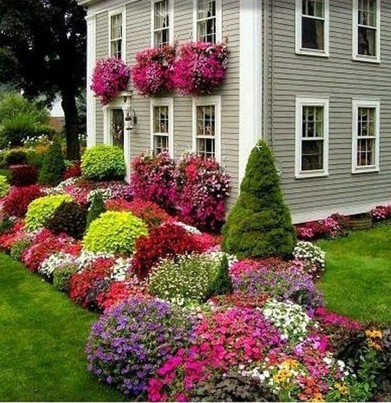 praderas para el jardin