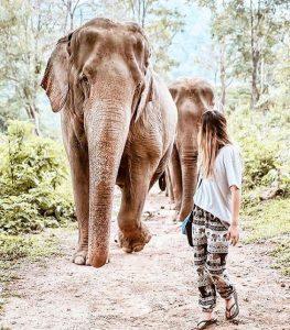 destinos para visitar en el sudeste asiatico en vietnam (10)