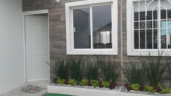 plantas para frente mi casa