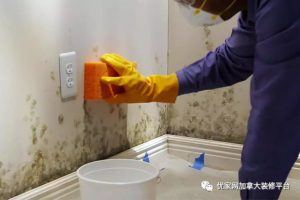 soluciones para eliminar la humedad en casas