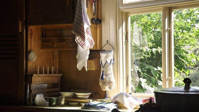 Limpia las ventanas y cristales de tu cocina